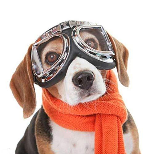 TXDIRECT Hundebrille Für Kleine Hunde Hunde Sonnenbrille wasserdichte Hundebrille UV-Brille für Hund Hundebrille Augenschutz Faltbare Hundesonnenbrille Clear