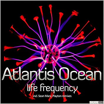 Life Frequency