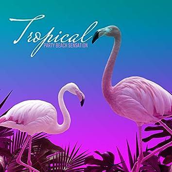 Tropical Party Beach Sensation: EDM Electro Chillout Beach Dance Party Music Set