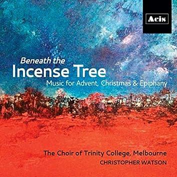 Beneath the Incense Tree