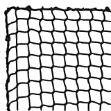 Aoneky Polyester Baseball Backstop Nets, 10x10ft Sports Practice Barrier Net, Heavy Duty Hitting Containment Netting, Baseball High Impact Net