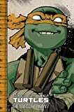 Teenage Mutant Ninja Turtles: The IDW Collection Volume 7 (TMNT IDW Collection)