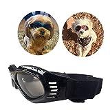 PetBoBo Anti-Fog Sunglasses