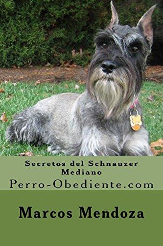 Secretos del Schnauzer Mediano: Perro-Obediente.com