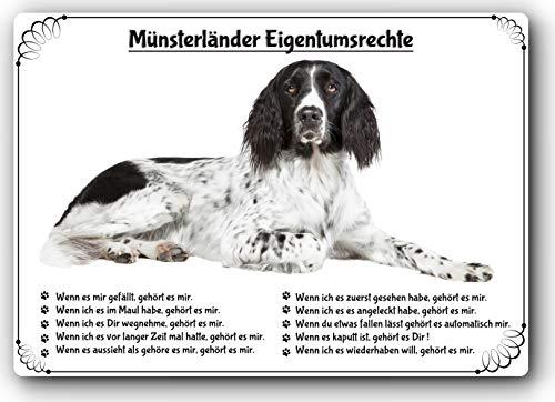 Merchandise for Fans Blechschild/Warnschild/Türschild - Aluminium - 15x20cm Eigentumsrechte Motiv: Münsterländer (01)