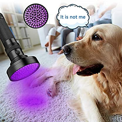 Coquimbo UV Torch 100 LED, Black Light UV Flashlight Ultraviolet Torch Pet Urine Stain Detector, Super Bright Blacklight Detector for Pet Stains, Bed Bug, Carpet, Floor (6 x AA Batteries Included) 5