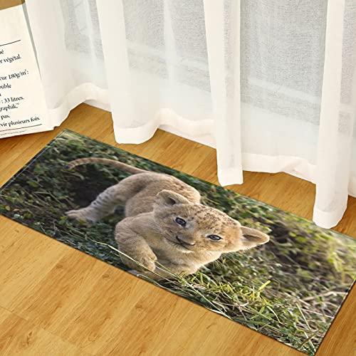 NHhuai Artificial Alfombra para salón Dormitorio baño sofá Silla cojín Felpudo Antideslizante de Alfombra Larga Animal Impresa Creativa