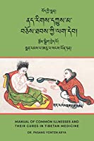 Manual of Common Illnesses and Their Cures in Tibetan Medicine (Nad rigs dkyus ma bcos thabs kyi lag deb)