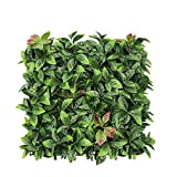 FLORALEAF Artificial Boxwood Panels Topiary Hedge Plant UV Protected Privacy Ivy Screen Faux Greenery Wall Décor Outdoor Indoor Use Backyard Garden Decoration 20' x 20', Photinia 6 Pieces