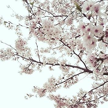 Sakura of That Day [demo]