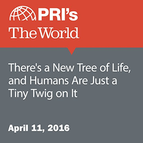 There's a New Tree of Life, and Humans Are Just a Tiny Twig on It audiobook cover art