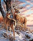 Marco de ciervos Diy pintura por números animales pintados a mano sobre lienzo dibujo por números cuadro de arte de pared moderno 40X50 Cm