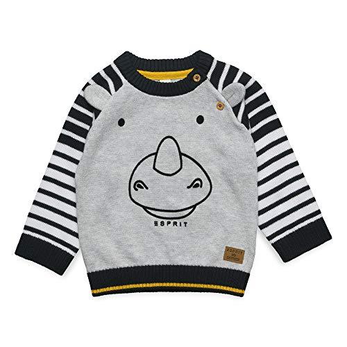 ESPRIT KIDS ESPRIT KIDS Baby-Jungen Sweater Pullover, Silber (Heather Silver 223), (Herstellergröße: 62)