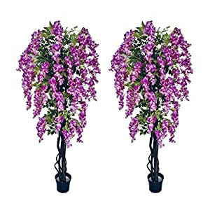 AMERIQUE Purple Pair Gorgeous & Unique 6 Feet Artificial Silk Wisteria Tree with Flowers, UV Protection, Feel Real Technology, Standable, 1680 Leaves 72, 2
