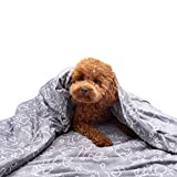 Carrot's Den Weighted Dog Blanket with Removable Cover, Cute Pattern | Calming, Anti-Anxiety | Small
