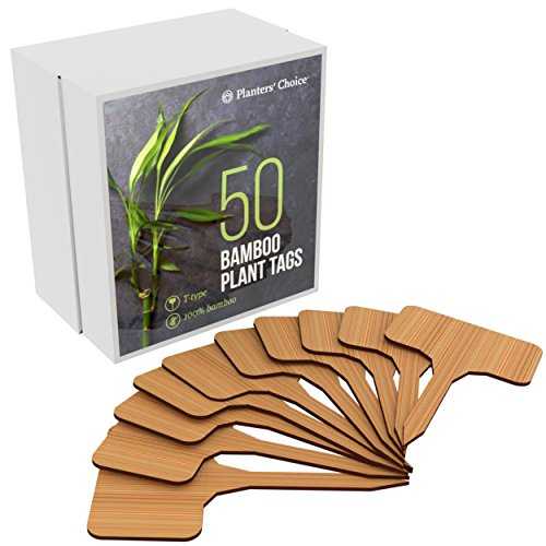 50 Bamboo Plant Labels in Gift Box (T-Type) - Plant Tags - Cheese Markers