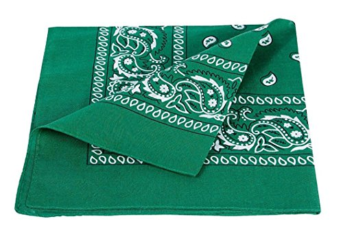 ILOVEDIY Bandana / Foulard Coton Original - Coloris Paisley (vert foncé)