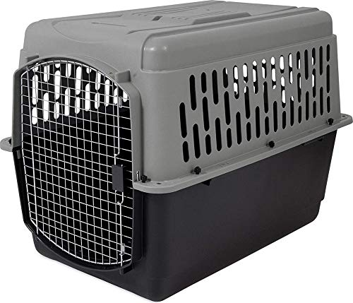 Aspen Pet Porter Heavy-Duty Pet Carrier with...