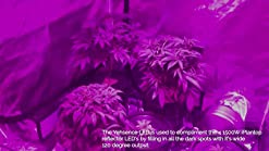 Yehsence 1500w Led Grow Light With Bloom And Veg Switch 15w Led Triple Chips Led Plant Growing