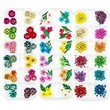 LIMGLIM 120pcs Nail Dried Flowers Resin...