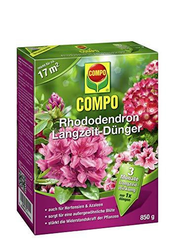 Compo -  COMPO Rhododendron