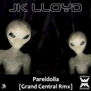 Pareidolia (Grand Central Remix)