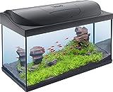 Tetra Starter Line Kit d'Aquarium Complet avec éclairage LED –...