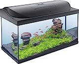 Tetra 283916 Starter Line Aquarium/Aquarium Complet avec éclairage LED 105 l