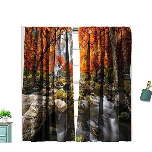 Zitenious Room Darkening Rod Pocket Curtain Waterfall in The Autumn Privacy Curtains for Living Room, W55 x L45