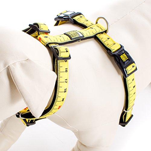 Max & Molly Hundegeschirr, gepolstert, Neopren, bequem, verstellbar, leicht zu kontrollieren, Lineal, Extra Small, Lineal