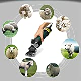 QWERTOUR Electric Sheep Goat Shearing Machine Shearing Clipper Wool Scissor Electric Shears 6 Speed...
