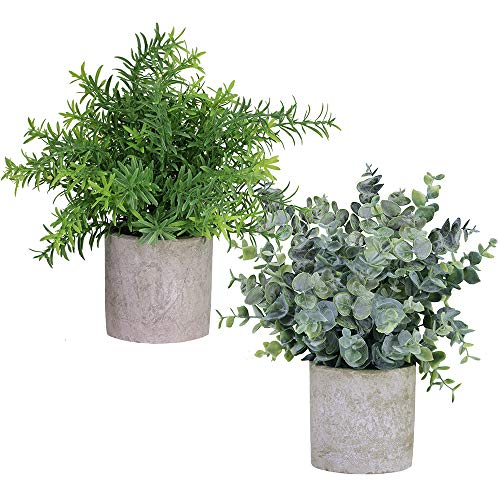 Winlyn 2 Pack Artificial Potted Plants Faux Eucalyptus & Rosemary Greenery in Pots Small Houseplants 8.3-9 Tall for Indoor Greenery Tabletop D