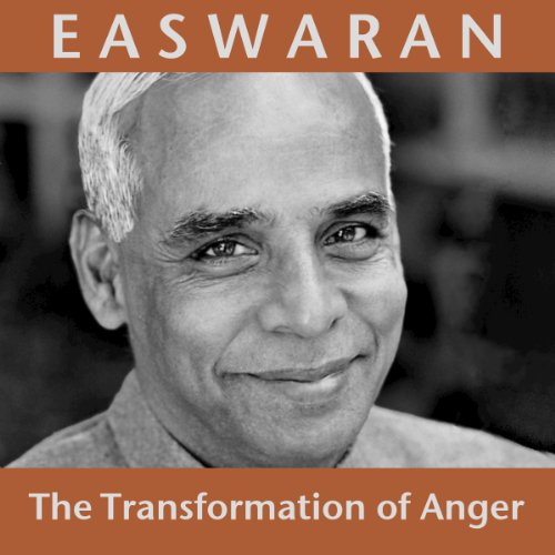 The Transformation of Anger audiobook cover art