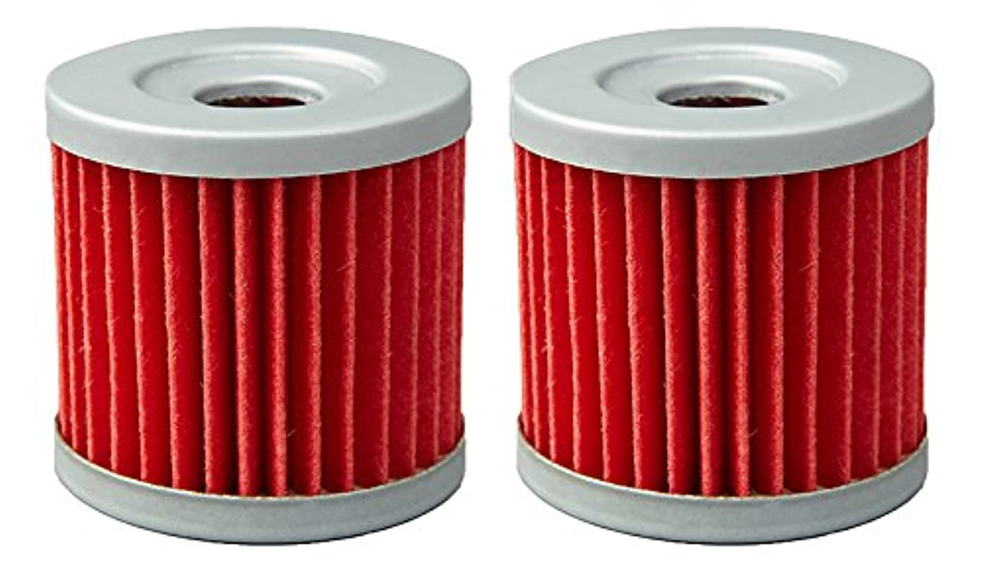 Outlaw Racing ORF198 Performance Oil Filter- Set of 2 POLARIS RANGER 800 XP ATV & VICTORY CLASSIC CRUISER STREET MOTORCYCLES Replaces KN198