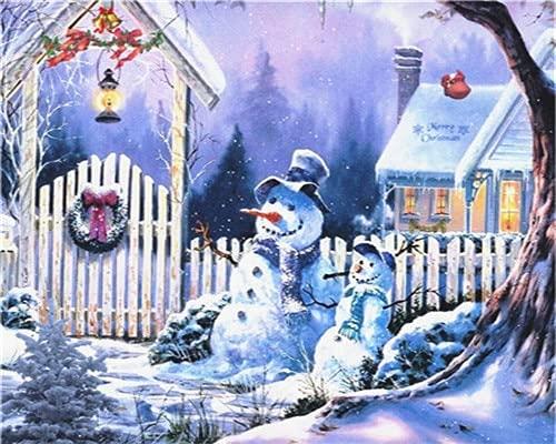 Pintura por números en lienzo invierno DIY pintura acrílica sin marco decoración del hogar para colorear por números paisaje para adultos regalo único W5 30x40cm
