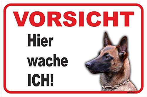 AdriLeo Schild - Vorsicht Malinois - Hier wache ich - (20x30cm) / Achtung Hund Wachhund