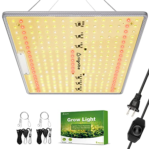 Grow Light, Briignite LED Grow Light, BRQ 600W LED Grow Light, Full Spectrum LED Grow Light with Sumsung LM281B LEDs, 2x2ft Coverage Plant Grow Light, Dimmable Grow Light for Indoor Plants, Seedling