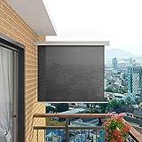Tidyard Toldo Lateral de Balcón Multifuncional Retráctil de Proporcionar Privacidad y Bloquear la Luz de Resistente a la Intemperie y Anti-UV 200 x 150 cm Gris