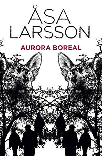 Aurora boreal (Booket Logista)