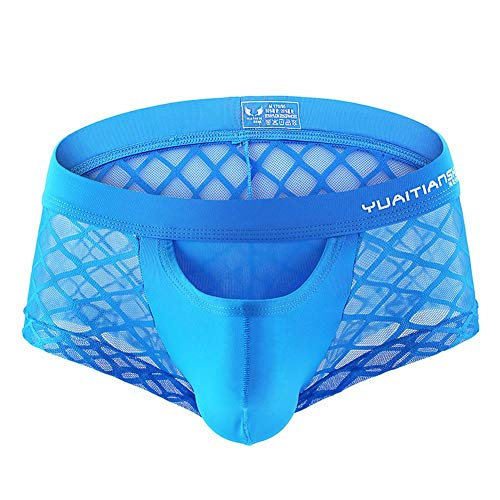 FYMNSI Ultra Thin Ice Silk Men's Sheer Mesh Boxer Briefs Underwear Sexy Sissy Bulge Pouch Trunks Shorts Breathable See Through Net Underpants Blue Small