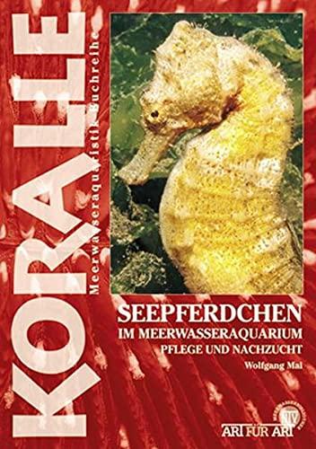 Seepferdchen im Meerwasseraquarium: Plege und Nachzucht: Pflege und Nachzucht (Koralle)