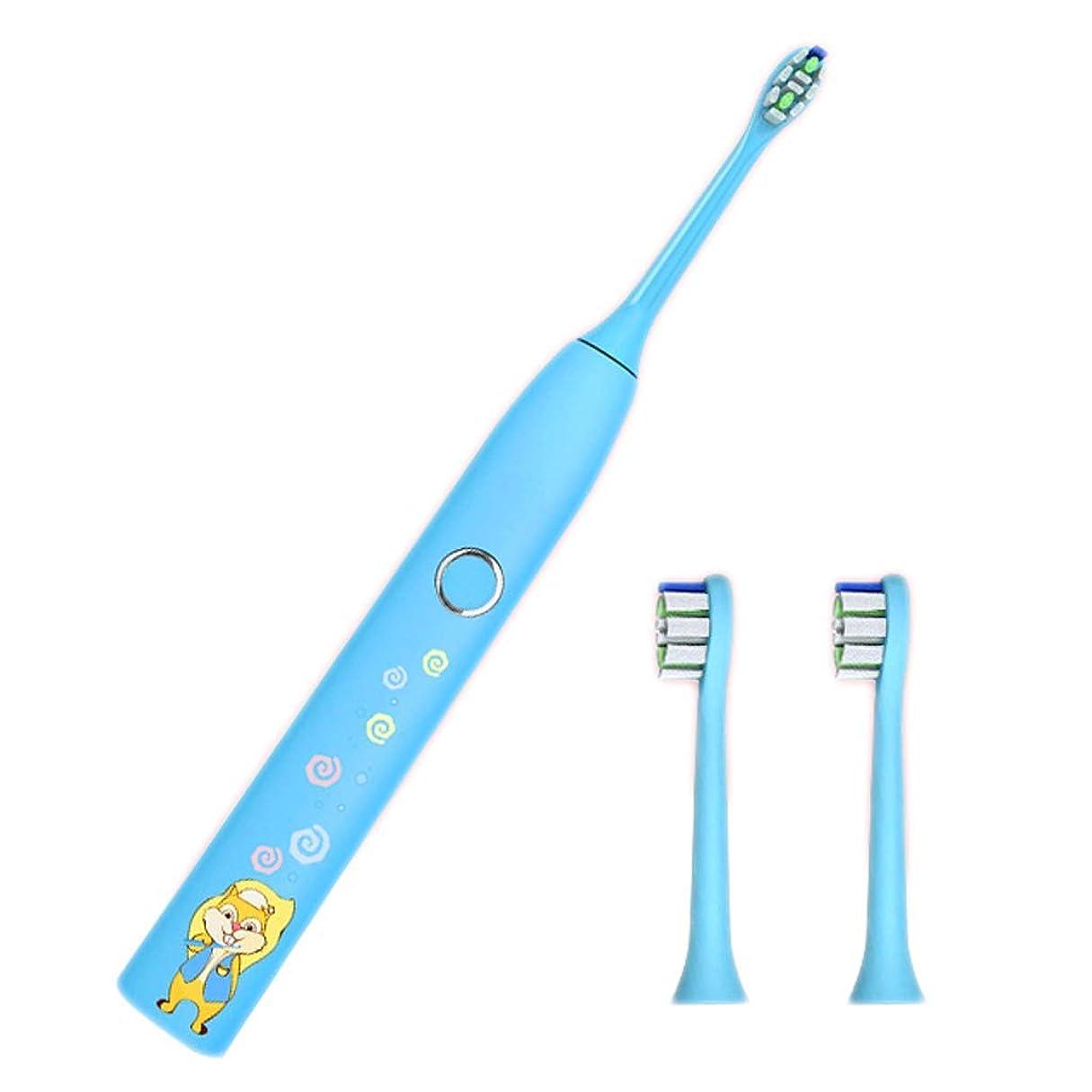 チャンピオンシップ誇りパーティション電動歯ブラシ子供6?12歳のやわらかい充電式子供用防水音波振動歯ブラシ(カラー:B)