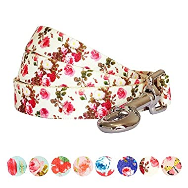 Blueberry Pet Durable Spring Scent Inspired Pink Rose Print Ivory Dog Leash 5 ft x 5/8 , Small, Leashes for Dogs