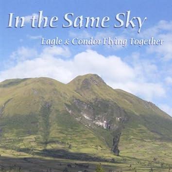 Same Sky: Eagle and Condor Flying Together