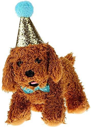 2 Unids Mascota Gato Perro de Cumpleaños Sombrero Sombreros Gorros Bowknot Traje de Fiesta Encantos...