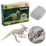 Riva776Yale Dinosaurier Kreativ Pädagogisch Spielzeug