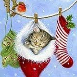 TianMaiGeLun Full Drill Kit di Pittura Diamante 5d Kit Artigianale a Punto Croce Nuovi Kit Fai-da-Te Regali di Natale per Bambini Adulti Dipingi per Numero Kit (Christmas Stocking Cat)
