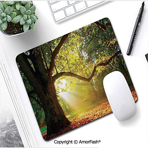"""Anti-Fray Cloth Gaming Mouse Pad High-Performance Mouse Pad Optimized for Gaming Sensors,11""""x13.8"""",Leaves,Majestic Mighty Oak Tree with Largely Broader Leaves Forest Sun Rays Nature,Orange Green Brown"""