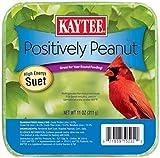 Kaytee Pet Products Bkt51122 Suet Cake Peanut Pet Food, 11-Ounce