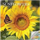 Sunflowers Calendar 2020 Set, ...